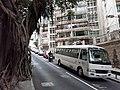 HK ML 香港半山區 Mid-levels 舊山頂道 Old Peak Road near Hornsy Road April 2020 SS2 05.jpg
