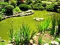 Hakone Gardens, Saratoga, CA - IMG 9231.JPG
