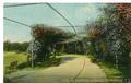 Hampton Park postcard - arbor.pdf