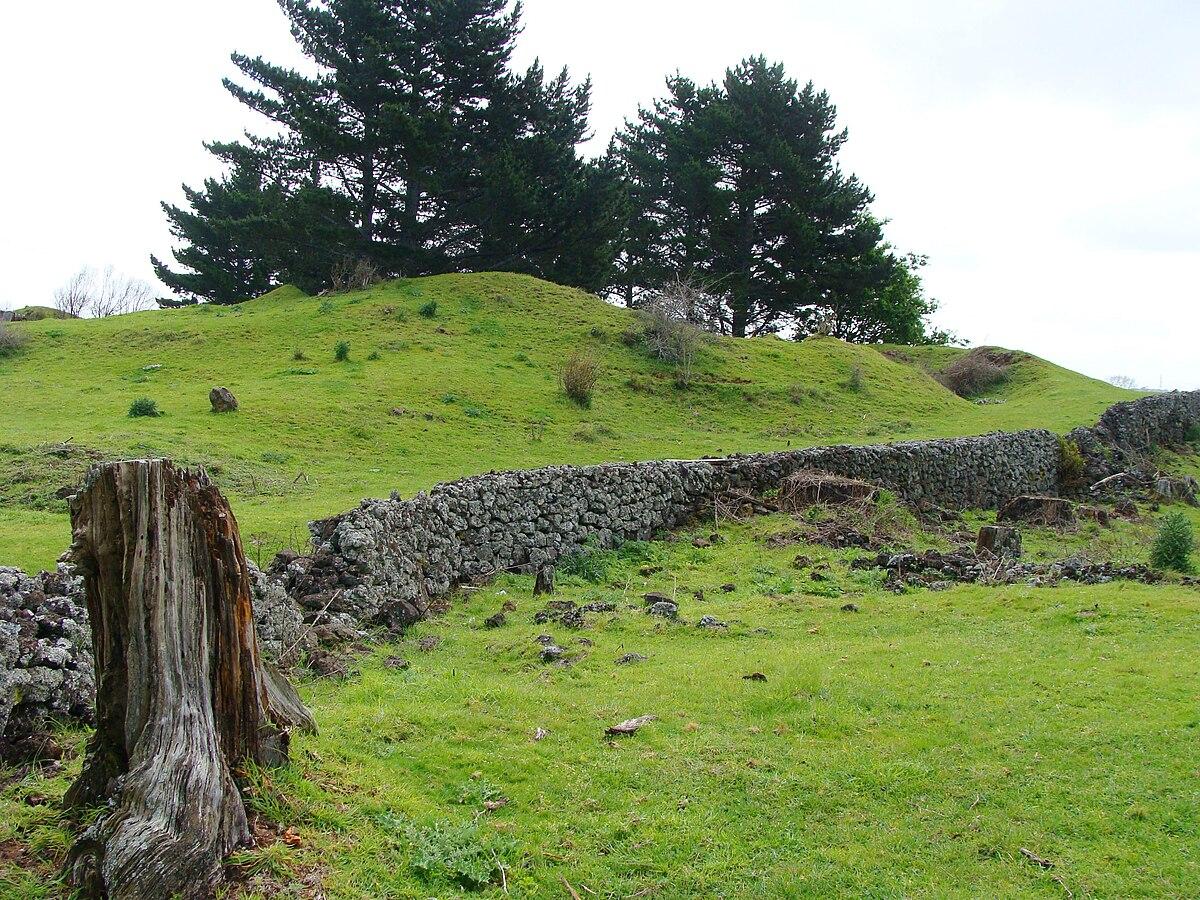 New Zealand Wikipedia: Hampton Park, New Zealand