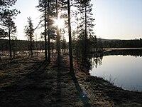 Harrijärvi UK-puisto 02.JPG