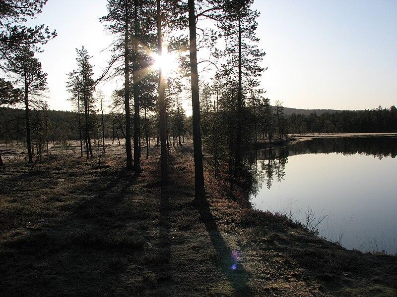 File:Harrijärvi UK-puisto 02.JPG