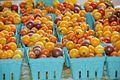 Harrisonburg VA farmers market 4 (4954063572).jpg