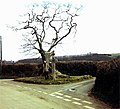 Hawson Cross - at turning to Cullaford Bridge 1969 - geograph.org.uk - 922741.jpg