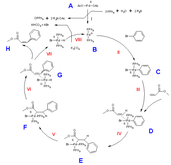 The Heck reaction mechanism, ultimate product either cis or trans