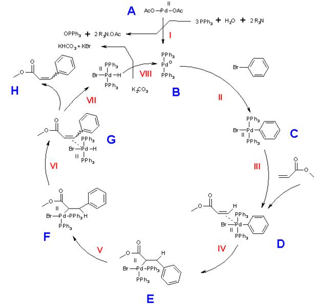 C C Bond Formation Anthony Crasto Reactions