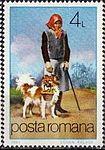 Helper-Dog-Canis-lupus-familiaris.jpg