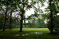 Het Kasteelpark van Bokrijk - 372521 - onroerenderfgoed.jpg