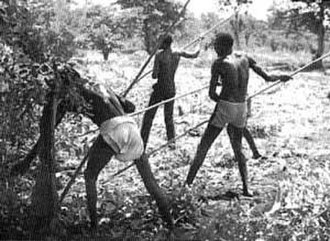Moru people - Using the traditional Moru hoe to clear a field ready for planting