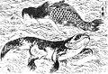 Hokusai Marmaid.jpg