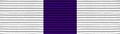 Honor Guard Ribbon.png
