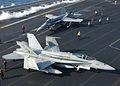Hornet.f18.750pix.jpg