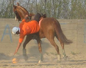 Horseball - Ramassage, i.e.: picking up the ball