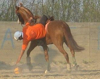 Horseball - Ramassage, i.e.: picking up the ball
