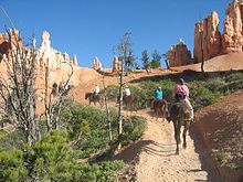 Horseriders on a dirt trail going toward pillars of pink rock