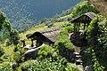 Humble home near the road. - panoramio.jpg