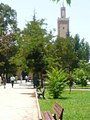 IFRAN DOWNTOWN CITY.MOROCCO 06.jpg