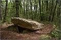 IMGP0744 SAINT-PARDOUX-ET-VIELVIC - Dolmen de Bonarme.jpg