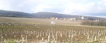 IMG Vignoble de Rully 4.JPG