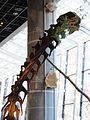 Ibaraki Nature Museum's. Nurosaurus head.jpg