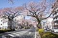 Ibaraki Prefectural Route-293 03.jpg