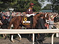 Ice Box at 2010 Belmont Stakes.jpg