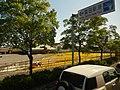 Imabari 今治 - panoramio.jpg