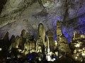 Inside Zhijin Cave 2019 05.jpg