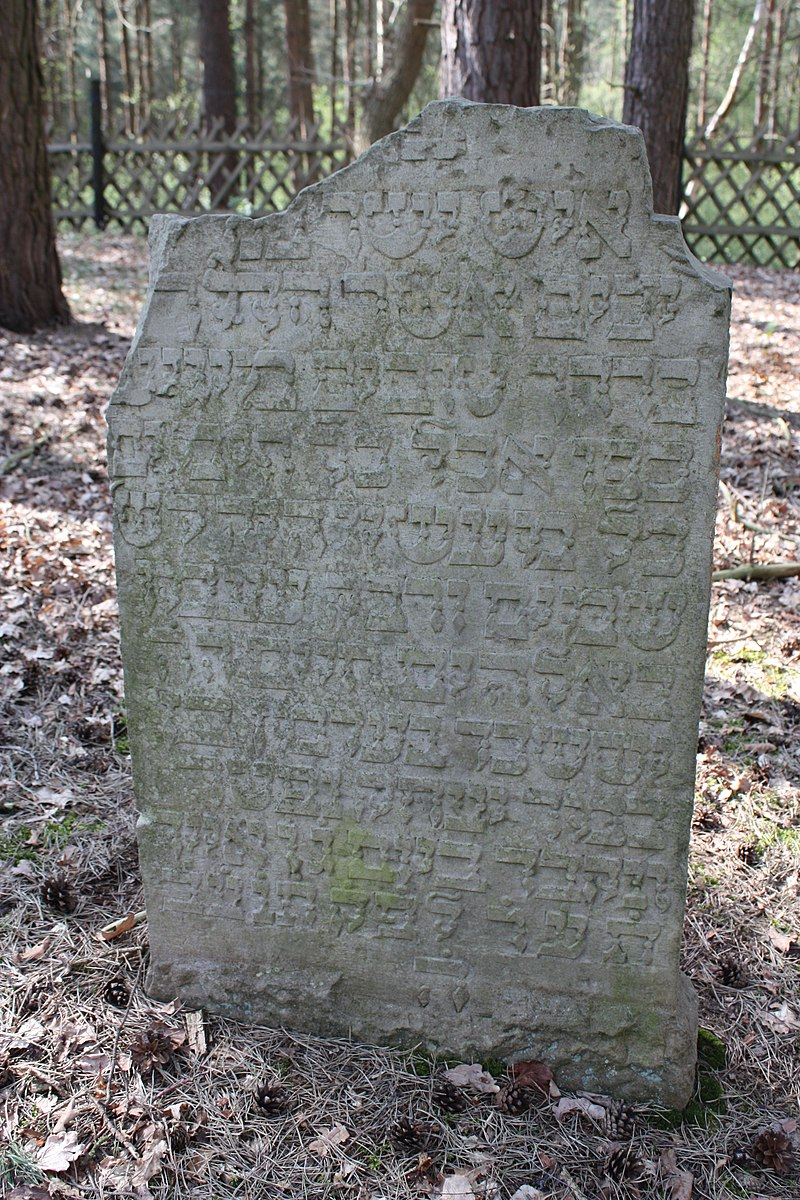 Jüdischer Friedhof Hoyerhagen 20090413 027.JPG