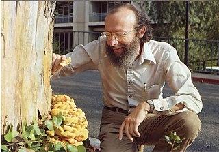 Jack Kiefer (statistician) American mathematician