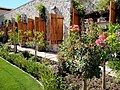 Jacuzzi Family Vineyards Rose Garden - Stierch.jpg