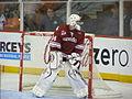 Jake Allen Montreal Juniorj.jpg