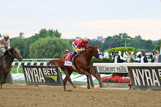 From commons.wikimedia.org: Justify - 2018 Belmont Stakes {MID-297489}