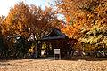 Kakogawa Kakurinji41s4592.jpg