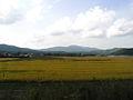 Kamaishi line view (2954199470).jpg
