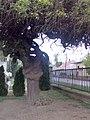 Kapuvári temető - Fura fa - panoramio.jpg