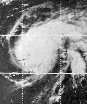 1966 Pacific typhoon season - Image: Kathy Oct 1319660405z ESSA3