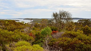 Kellidie Bay Conservation Park Protected area in South Australia