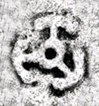 Kharahostes - Dynastic mark of Kharahostes.