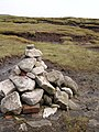Kinder Scout summit - geograph.org.uk - 76502.jpg