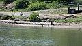 Kiwanis Memorial Park and South Saskatchewan River, Saskatoon (505720) (26142409815).jpg
