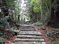 Kumano Kodo pilgrimage route Daimon-zaka World heritage 熊野古道 大門坂19.JPG