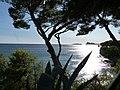 L'île Verte et le Bec de l'Aigle vus de la corniche du Liouquet.jpg