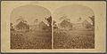 L.A. Morrison & Son woolen factory, Byfield, Mass, from Robert N. Dennis collection of stereoscopic views.jpg
