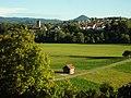 "LSG ""Neckartal zwischen Tübingen und Plochingen"" bei Oferdingen.jpg"