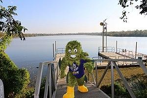 Louisiana State University in Shreveport - The River Monster of LSUS
