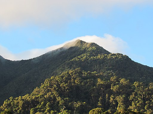 La Amistad Panama Biosphere Reserve - Parque Nacional Volcan Baru (a core zone) 39
