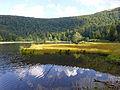 Lac de Blanchemer-Tourbière (2).jpg