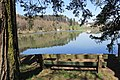 Lac de Bret - panoramio (10).jpg