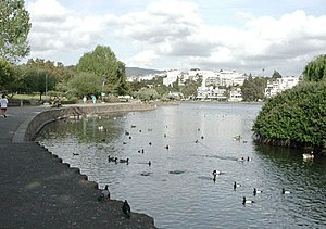 Photograph of the Lake Merritt bird sanctuary....